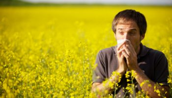 Cabin filter change can help hay fever sufferers