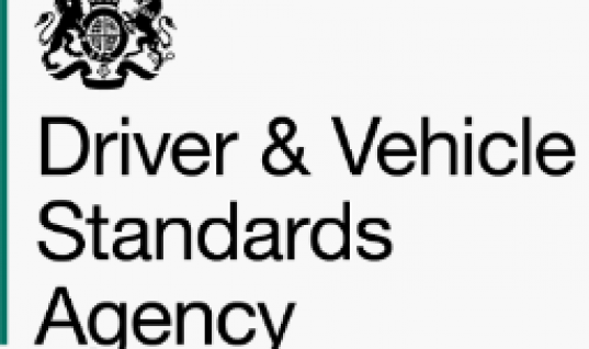 DVSA launched by government