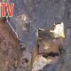 Video: MOT horror as tester discovers rusty holes filled with silicone on kids minibus