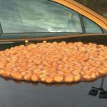 "Driver's car that ""blocked gates"" is attacked with baked beans"