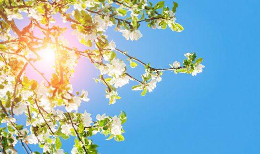 Mobile technicians warned against dangers of the sun's UV rays
