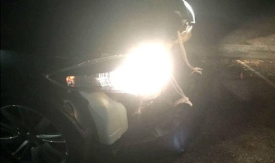 Police pull over bandage-repaired car on M1