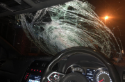 Police condemn driver over damaged windscreen