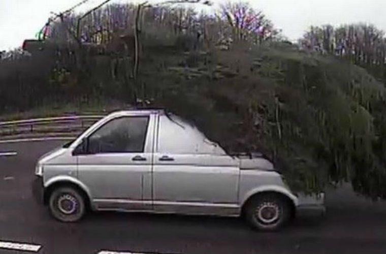 Van caught hauling massive Christmas tree on Somerset road