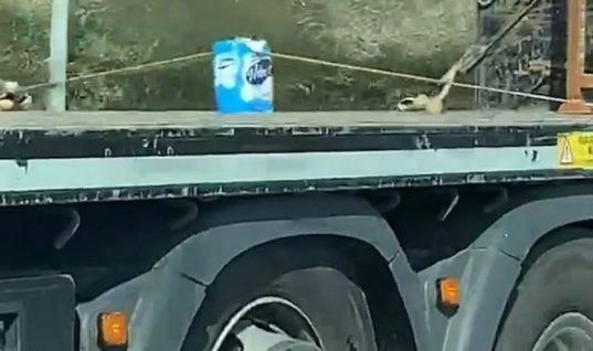 Watch: Lorry driver spotted with prized toilet roll load