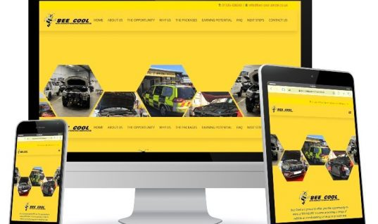 Air-conditioning opportunity showcased on new Bee Cool website